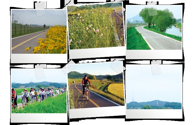 자전거를 탄 푸른 시흥