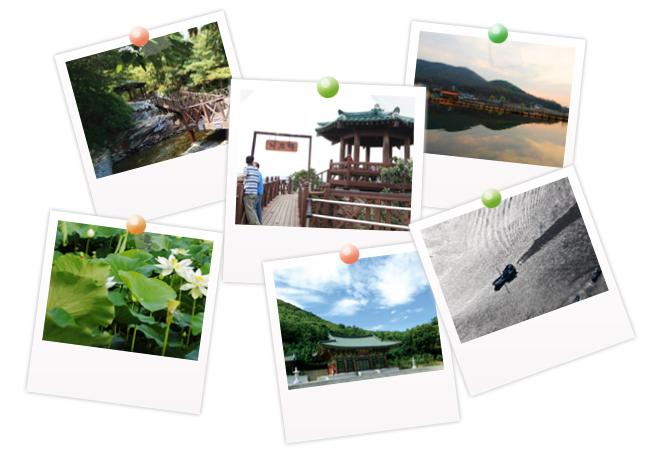 우아한 솔로의 아름다운 비행 여행의 참맛을 찾으러 보물창고로 떠나자.